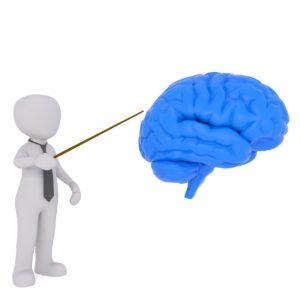 Brain Health Hyaluronic Acid