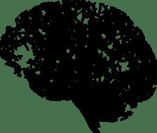 Brainwave Patterns