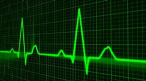 Heart Disease & Diet