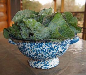 Leafy Greens Diet