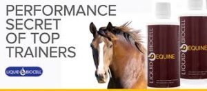Liquid BioCell Equine Pain Prevention