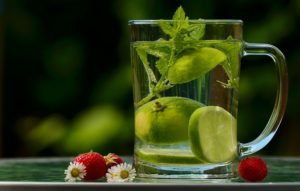 Water Health Infusion